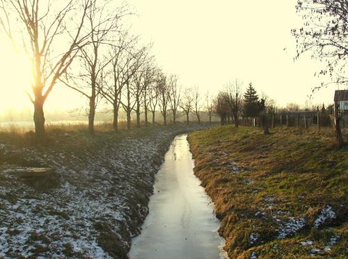 Słoneczna rzeka #Rzeka #Słońce #natura #przyroda