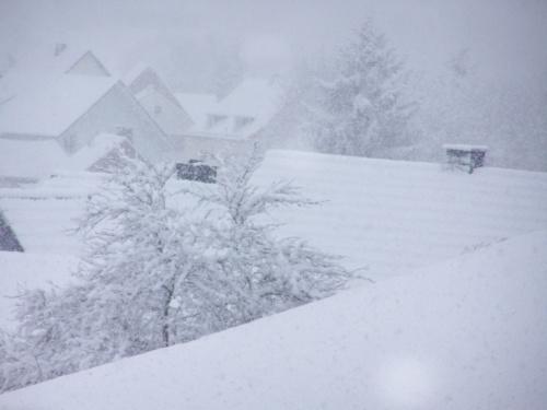 W Marcu jak w garncu:) #uima #snieg #piekno
