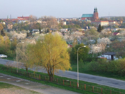 2007 / 2008 zima wiosna i lato widoki z balkonu