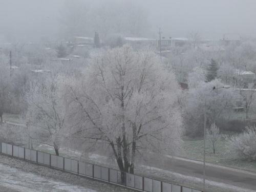 Gniezno: zima, wiosna,lato widziane z okna balkonu 2007/2008 roku
