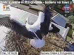 http://images26.fotosik.pl/24/df7c55f0e6776eaam.jpg