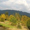 Jesień w Beskidzie Żywieckim #Góry #Beskidy #BeskidŻywiecki #Jesień #PoryRoku