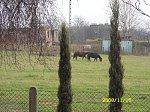 http://images26.fotosik.pl/295/16f16a5875502360m.jpg