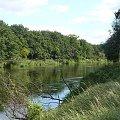 """Brzeg rzeki """"Warta"""" - okolice Śremu #rzeka #warta #Śrem"""