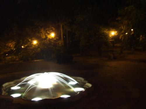Pelikan 13 #fontanna